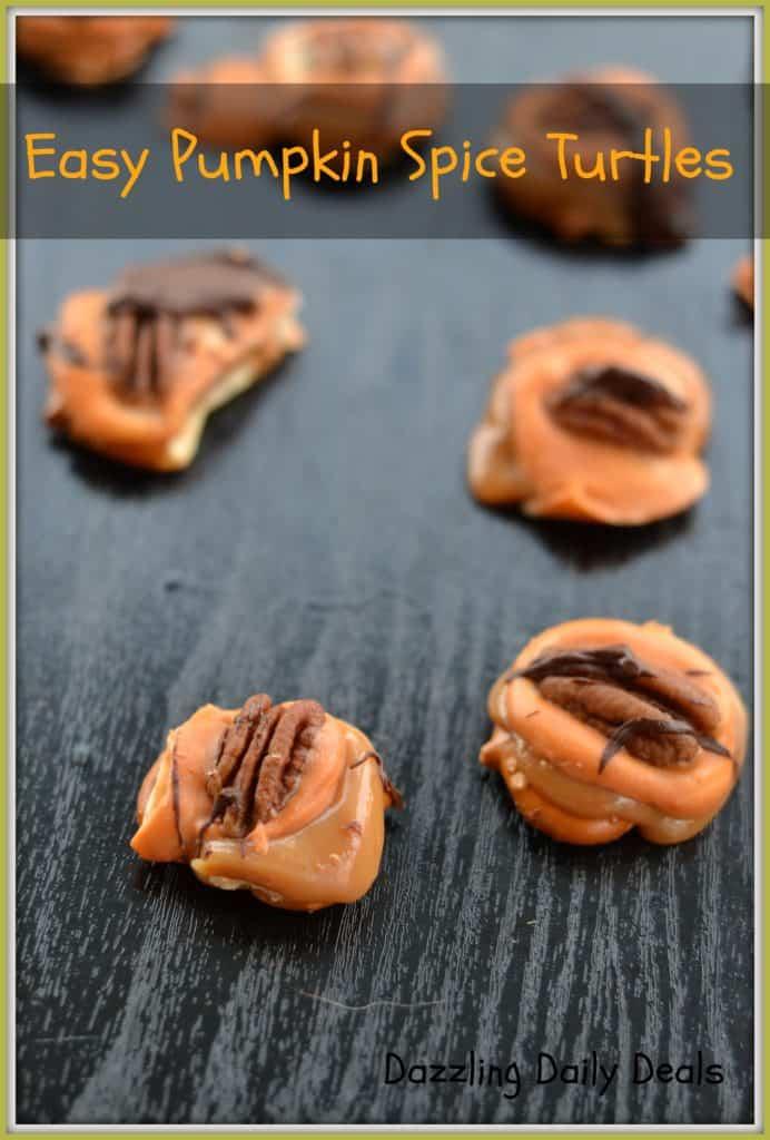 Pumpkin Spice Tutles E