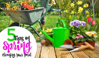 5 Tips on Spring Cleaning Your Yard