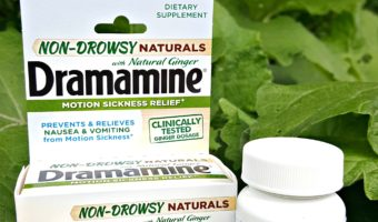 Make Summer Travel Easier With Dramamine®